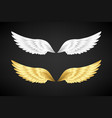 white and gold angel wings collection vector image vector image