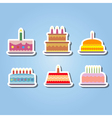 color icons with birthday cake vector image
