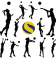 volleyball man and woman player vector image