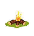 burning bonfire on green grass firewood and hot vector image vector image