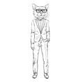 cat dressed up in tuxedo vector image vector image