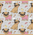 cute cartoon pug pattern cheerful funny dog vector image