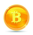 golden bitcoin coin crypto currency golden coin vector image vector image