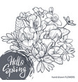 hello spring text hand lettering with hand drawn vector image vector image