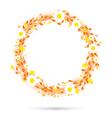 orange round flowers vector image vector image