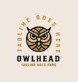 owl head logo template vector image vector image