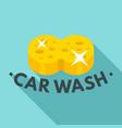 sponge car wash logo flat style vector image vector image
