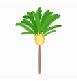 Banana palm tree icon cartoon style vector image vector image
