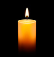 Candlelight Icon vector image