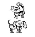 dog and cat characters hand-drawn on white vector image vector image