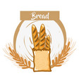 fresh and delicious french bread of wheat vector image vector image