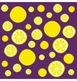 lemon slices pattern vector image vector image