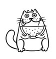 thick cat with watermelon isolated vector image