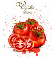 watercolor tomatoes delicious design with vector image