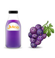 bottle of grape juice with cute grape cartoon vector image vector image