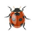 ladybug clipart isolated on white background vector image vector image