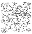 line drawing flowers rose with leafy branches vector image