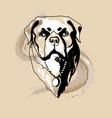 rottweiler dog logo vector image