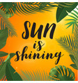 tropical palm leaves design for text card sun is vector image