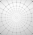 Wireframe Polygonal Element Abstract Background vector image