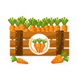wooden basket carrots on white background vector image