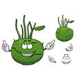 Fresh vegetable kohlrabi cabbage cartoon character vector image