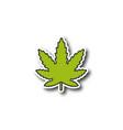 marijuana leaf patch vector image