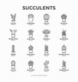 set cactus and succulents in pots thin line vector image