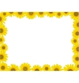 sunflower frame vector image