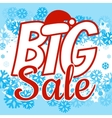 Winter sale poster with BIG SALE text Advertising vector image vector image