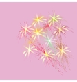 Bouquet of spring flowers on a pink background vector image