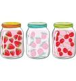 fruit jar vector image