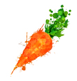 Carrot made of colorful splashes vector image vector image