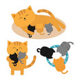 cat mother laying on floor feeding kittens vector image