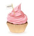 Fresh Cupcake vector image