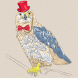 funny cartoon hipster bird Rough-legged Buzzard vector image vector image