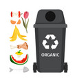 grey garbage can with organic elements vector image