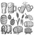 set hand drawn beer design elements design vector image vector image