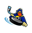 swashbuckler ice hockey sports mascot vector image vector image