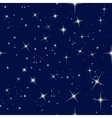 night sky and stars vector image