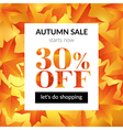 Autumn sale background with maple leaves vector image vector image