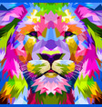 close up of face lion vector image vector image