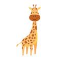 cute cartoon little giraffe isolated on white vector image vector image