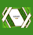 luxurious premium green abstract background vector image vector image