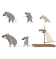 set of six rodents vector image vector image