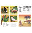 sketch bali exotic composition vector image vector image