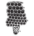the cells of a beehive vintage vector image vector image