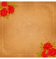 Vintage background with roses greeting vector image vector image