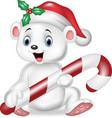 Cute baby polar bear holding Christmas candy vector image vector image
