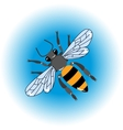 Isolated bee icon vector image vector image